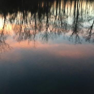 Sunrise reflection 2.29.16
